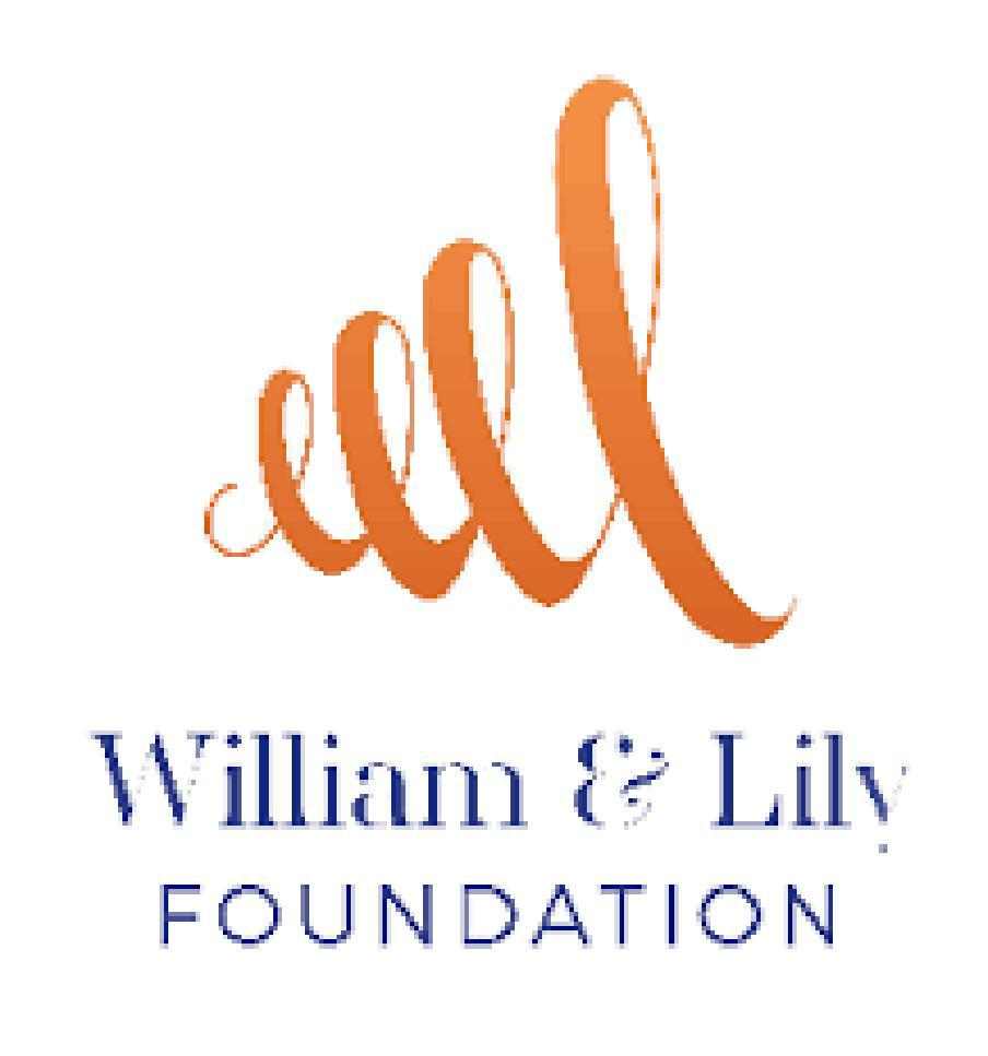 William & Lily Foundation